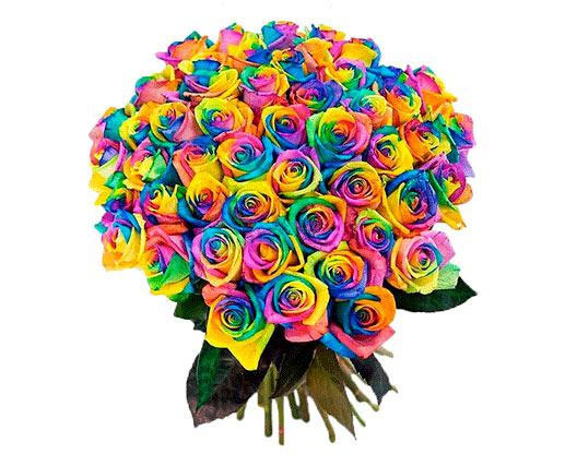 Москва радужные розы
